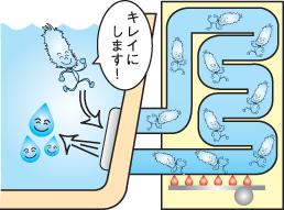 風呂釜洗浄2